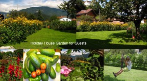 swiss holiday house36 Jan. 16 18.25