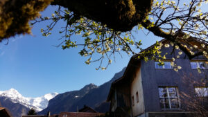 Holiday house rental Wilderswil Switzerland